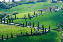 Photo of En introduktion til vinene fra Chianti
