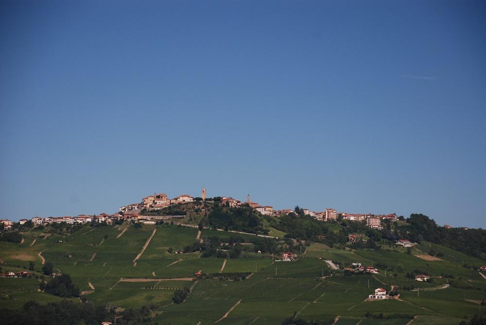 Photo of Dolcetto: En af de store vine fra Piemonte